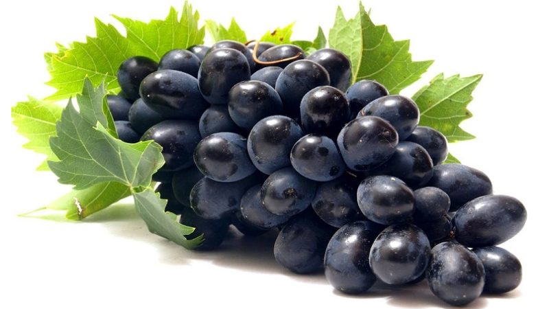 Black Grapes Benefits Our Top 20 List With Nutrition Facts