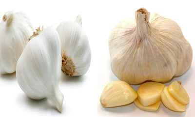 Garlic Side Effects 13 Unexpected List – You Must Be Aware Of