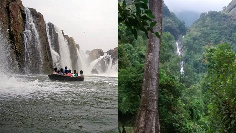 Waterfalls That You Must See When You Visit Tamil Nadu