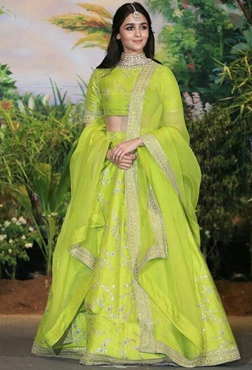 Alia Bhatt in Embroidery Saree