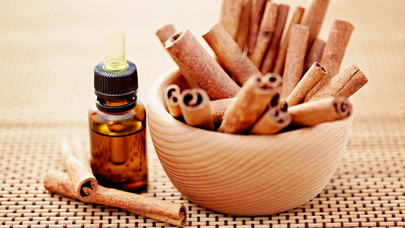 Cinnamon Seeds Benefits
