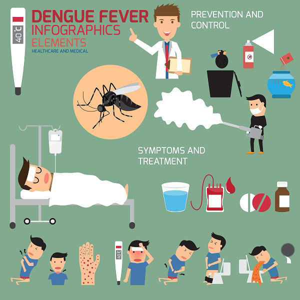 how to cure dengue fever at home