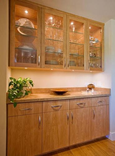Best Kitchen Showcase Designs