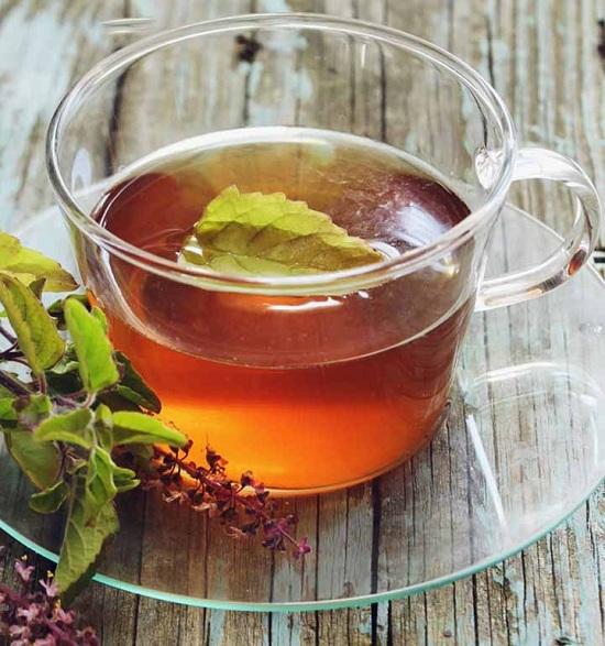 holy basil tea benefits