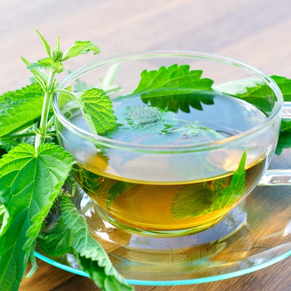 tulsi tea benefits
