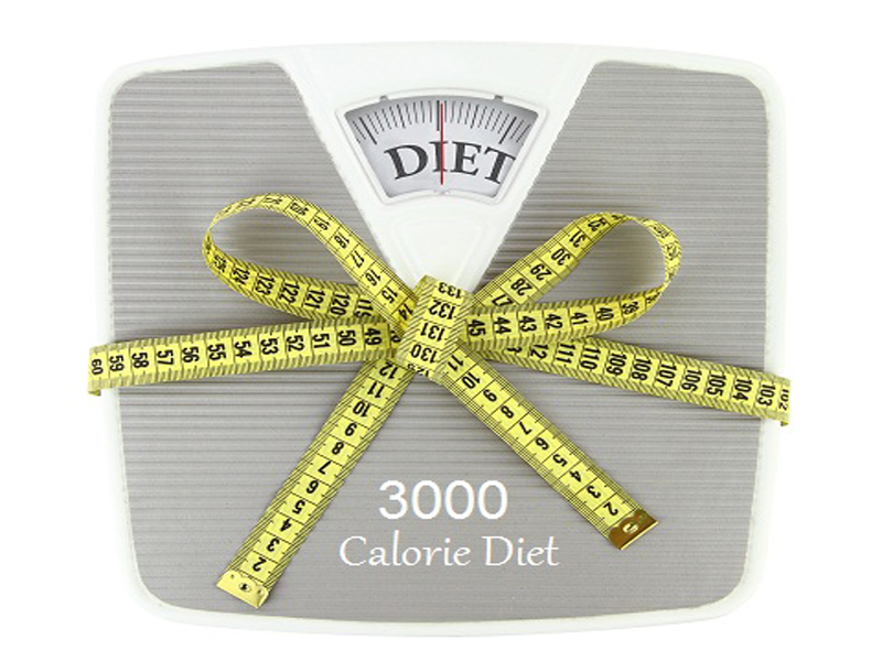 What Is 3000 Calorie Diet Plan How Does It Work Styles At Life