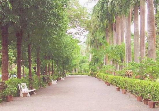Botanical Garden Waghai