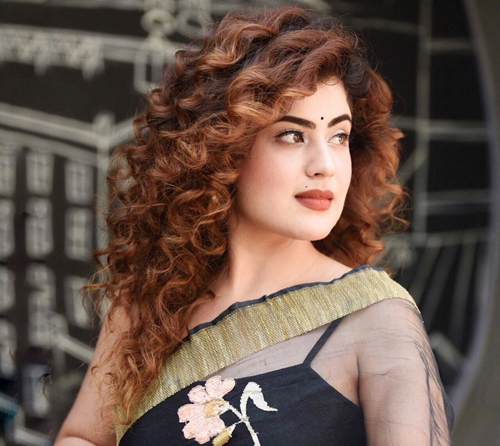 Curly Hairstyle for Silk Saree