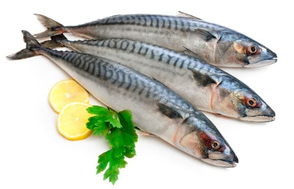 Fish Foods to Increase Height