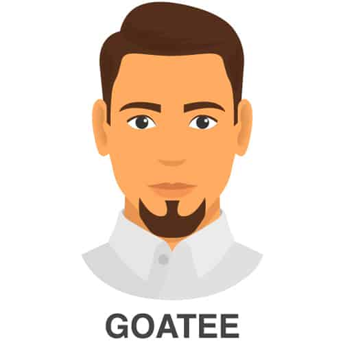 Goatee Facial Hairstyle Look