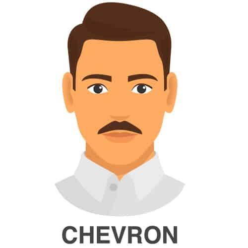 Chevron Facial Style