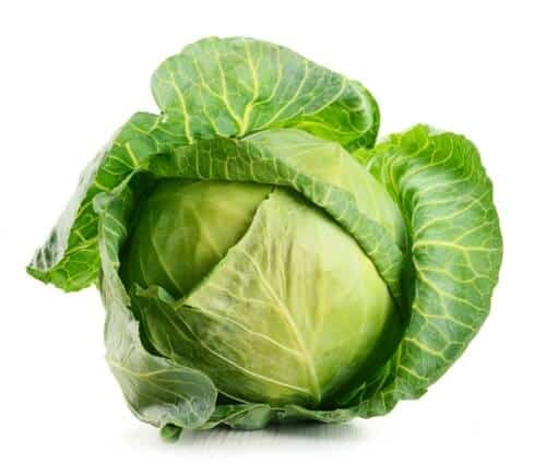 Fresh Cabbage Leaves to Treat Tendonitis in Foot