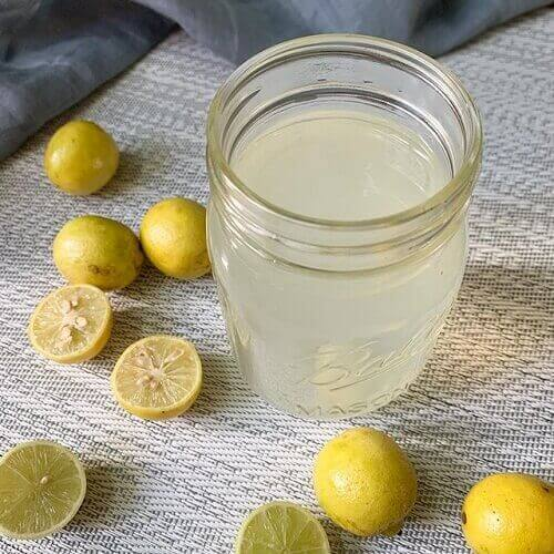 lemon juice pregnancy