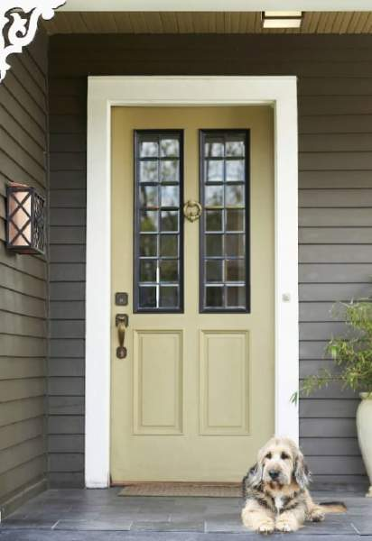 Back Door Design