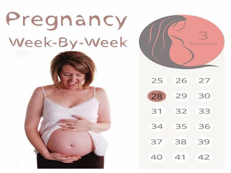 28 Weeks Pregnant: Symptoms, Developments and Precautions