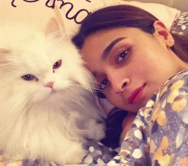 Alia Bhatt Pet Lover