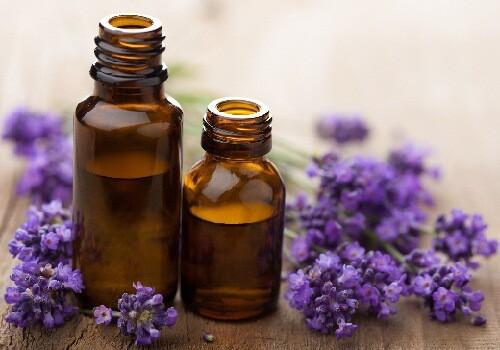 lavender oil as home remedy for migraine headache