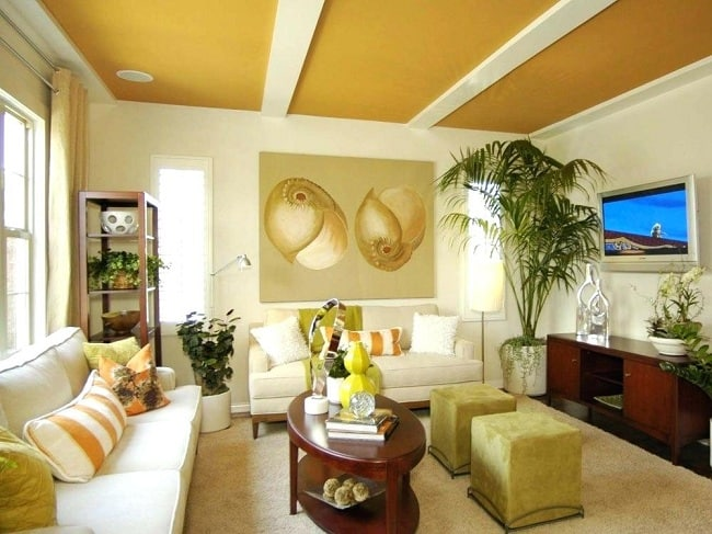 10 Best False Ceiling Colour Ideas With Pictures In 2021