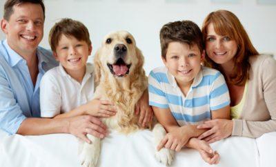 types of pet animals