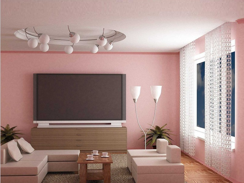 20 Latest Hall Colour Designs With Pictures Vastu Tips