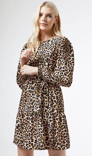 Leopard Print A Line Short Dress